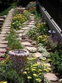 san diego landscape design, cottage floral garden