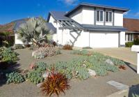 San Diego succulent landscape, san diego landscape design, san diego drought tolerant landscaping