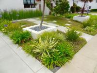 San Diego turf replacement, san diego landscape design