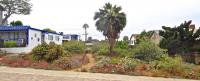 channel islands natives landscaping, san diego natives landscaping