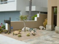 san diego landscape design, san diego drought tolerant landscaping