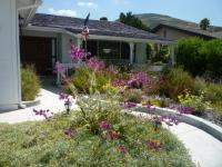 san diego landscape design, floral landscape, low water, drought tolerant landscape