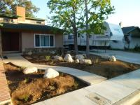 san diego natives landscaping, san diego drought tolerant landscaping