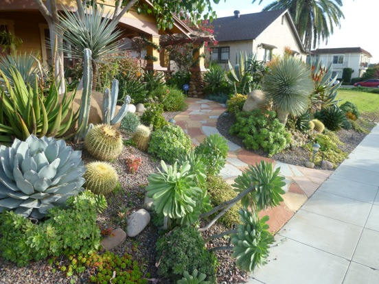 Cactus landscape ideas home decorating ideas for Garden design using succulents